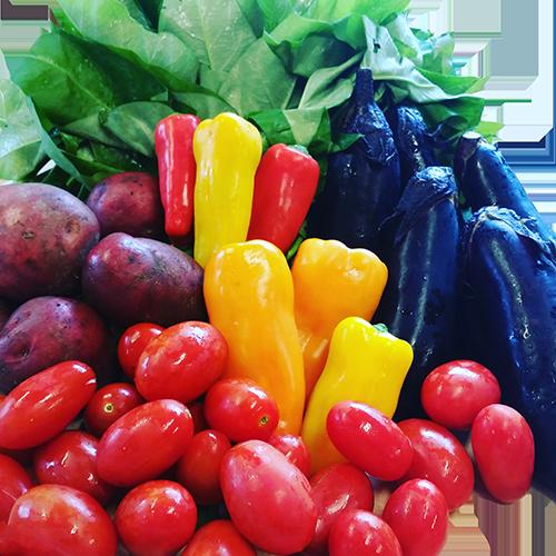 シックス・プロデュースの厳選食材・こだわり野菜