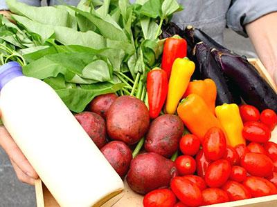 烏田農園の野菜